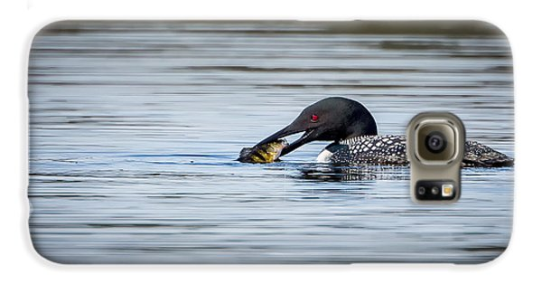 Common Loon Galaxy S6 Case by Bill Wakeley