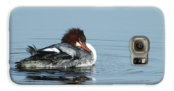 Common Merganser Galaxy S6 Case