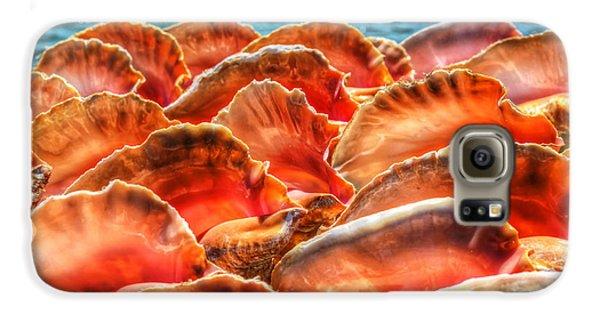 Conch Parade Galaxy S6 Case