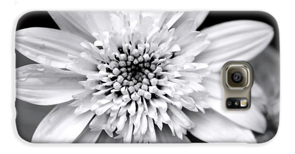 Galaxy S6 Case featuring the photograph Coreopsis Flower Black And White by Christina Rollo