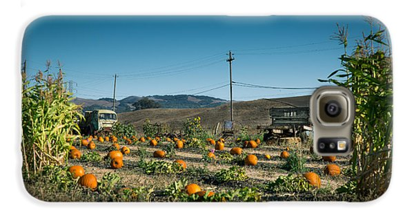 Country Pumpkin Patch Galaxy S6 Case by Kim Wilson