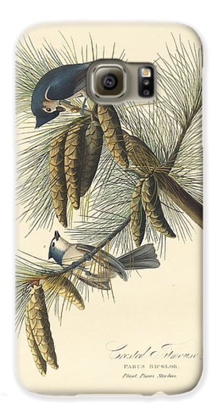 Titmouse Galaxy S6 Case - Crested Titmouse by Dreyer Wildlife Print Collections