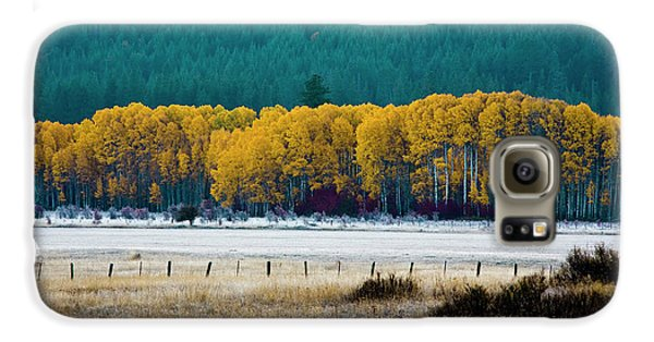 Crisp Aspen Morning Galaxy S6 Case