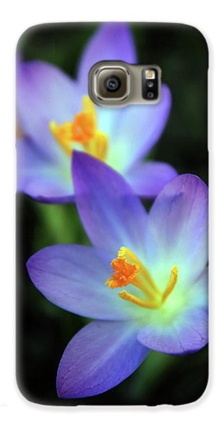 Galaxy S6 Case featuring the photograph Crocus In Bloom by Jessica Jenney