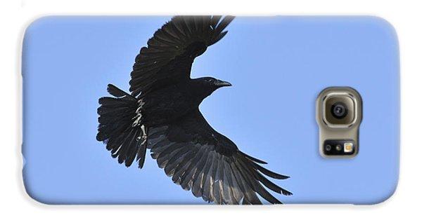 Crow In Flight Galaxy S6 Case