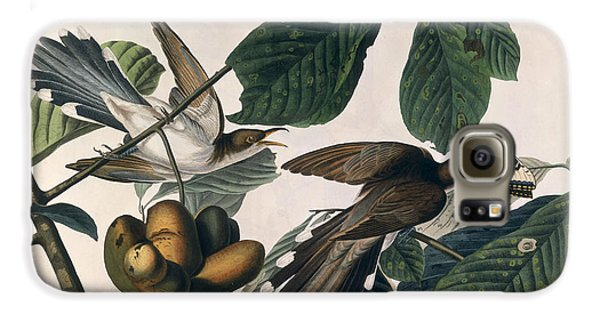 Cuckoo Galaxy S6 Case - Cuckoo by John James Audubon