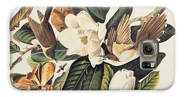 Cuckoo Galaxy S6 Case - Cuckoo On Magnolia Grandiflora by John James Audubon