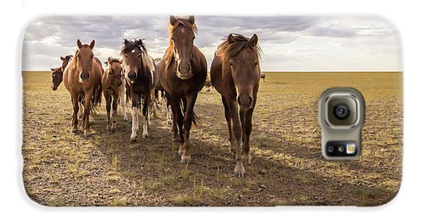 Galaxy S6 Case featuring the photograph Curious Horses by Hitendra SINKAR