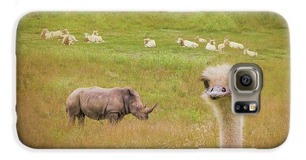 Curious Ostrich And White Rhino Galaxy S6 Case