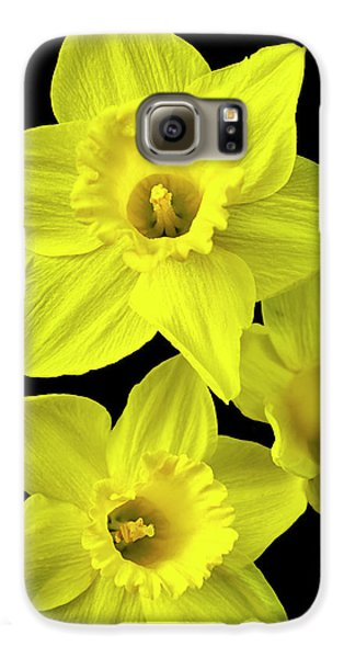 Galaxy S6 Case featuring the photograph Daffodils by Christina Rollo