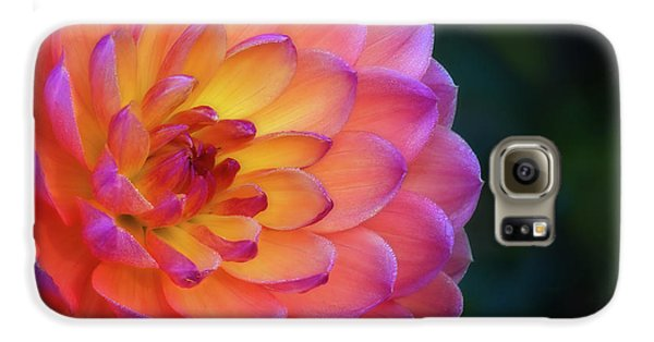 Dahlia Portrait Galaxy S6 Case