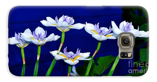 Dainty White Irises All In A Row Galaxy S6 Case