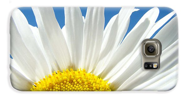 Daisy Art Prints White Daisies Flowers Blue Sky Galaxy S6 Case by Baslee Troutman