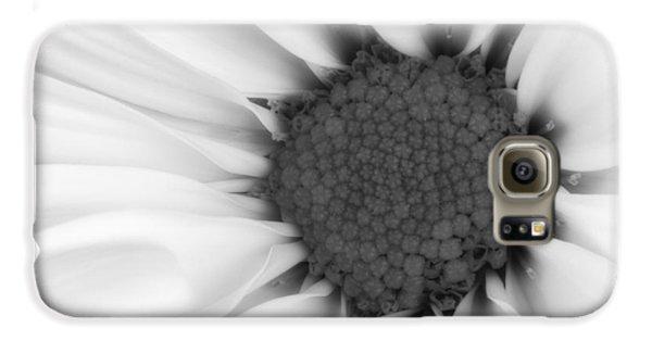 Daisy Galaxy S6 Case - Daisy Flower Macro by Tom Mc Nemar