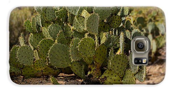 Desert Prickly-pear No6 Galaxy S6 Case