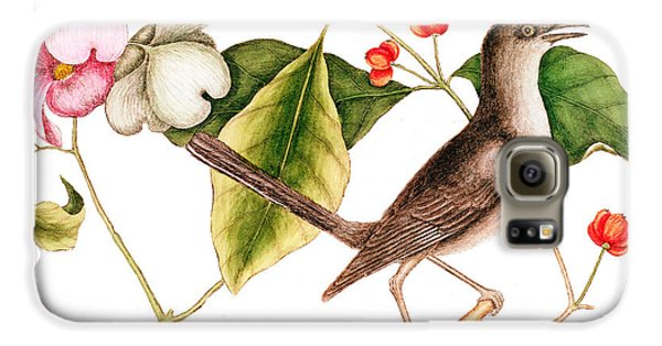 Dogwood  Cornus Florida, And Mocking Bird  Galaxy S6 Case