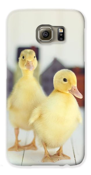 Ducks In The Neighborhood Galaxy S6 Case