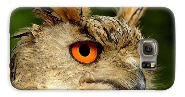 Eagle Galaxy S6 Case - Eagle Owl by Jacky Gerritsen