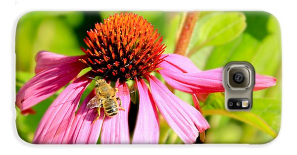 Echinacea Bee Galaxy S6 Case
