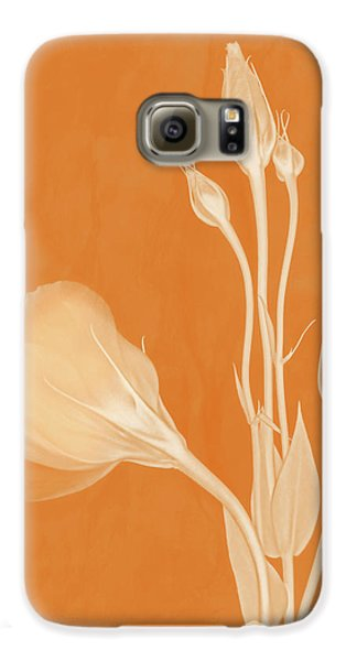 Elegance In Apricot Galaxy S6 Case