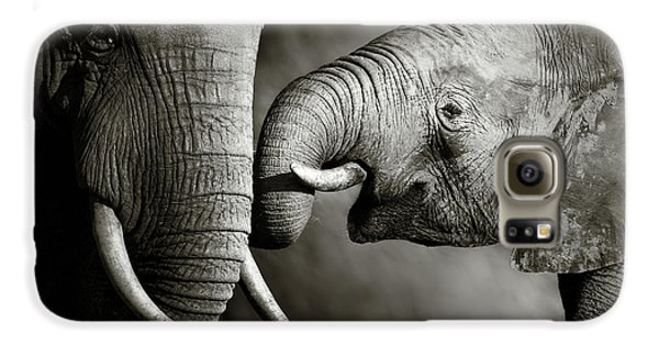 Animals Galaxy S6 Case - Elephant Affection by Johan Swanepoel