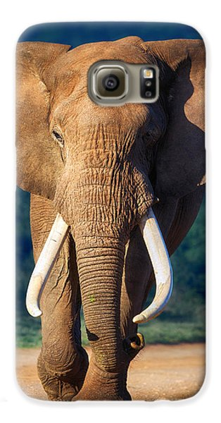 Largemouth Bass Galaxy S6 Case - Elephant Approaching by Johan Swanepoel