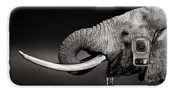 Bull Galaxy S6 Case - Elephant Bull Drinking Water - Duetone by Johan Swanepoel