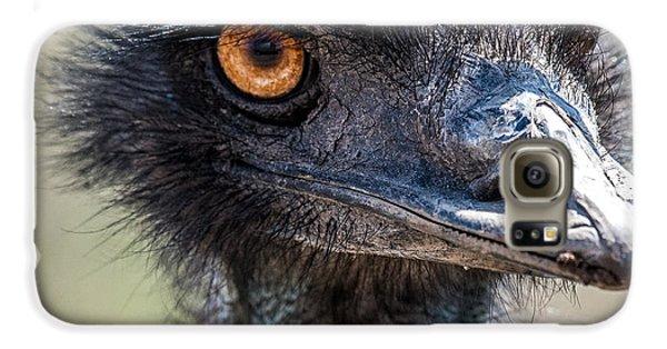 Emu Eyes Galaxy S6 Case by Paul Freidlund
