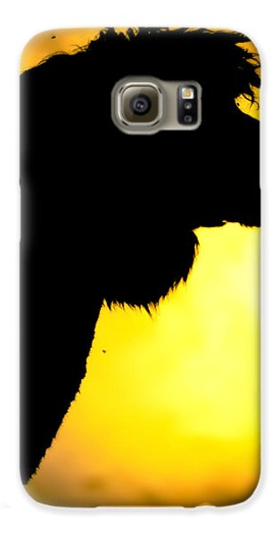 Endless Alpaca Galaxy S6 Case by TC Morgan