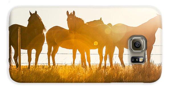 Horse Galaxy S6 Case - Equine Glow by Todd Klassy