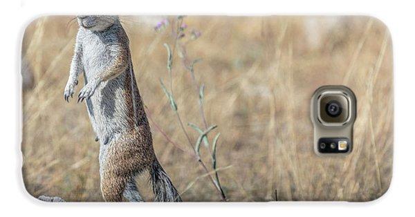 Meerkat Galaxy S6 Case - Etosha - Namibia by Joana Kruse