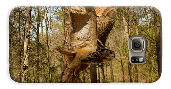 Eurasian Eagle Owl In Flight Galaxy S6 Case