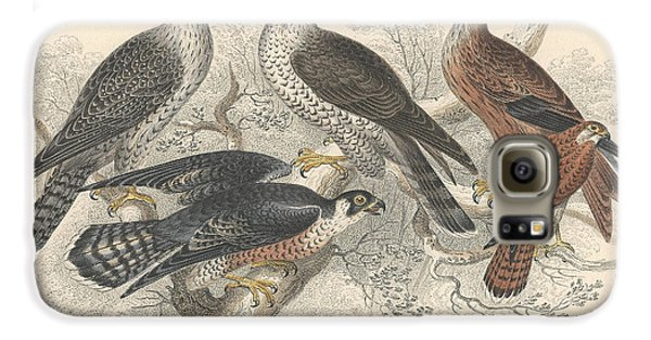 Falcons Galaxy S6 Case by Rob Dreyer