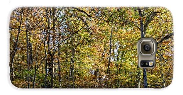 Fall Colors Of Rock Creek Park Galaxy S6 Case