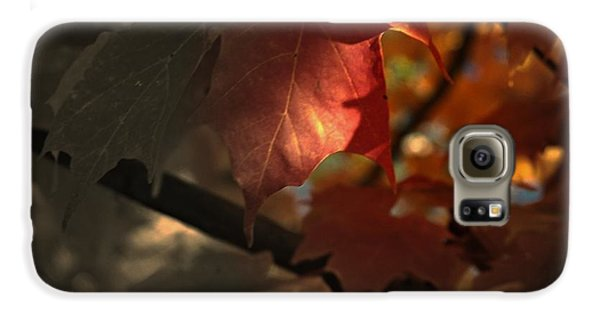 Fall Or Not Galaxy S6 Case