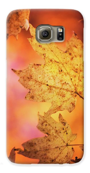 Fall Reveries Galaxy S6 Case