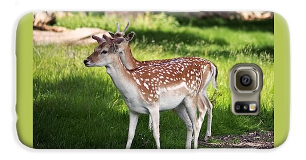 Fallow Deer In Richmond Park Galaxy S6 Case