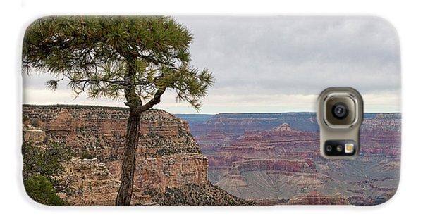 Fearless Tree Galaxy S6 Case