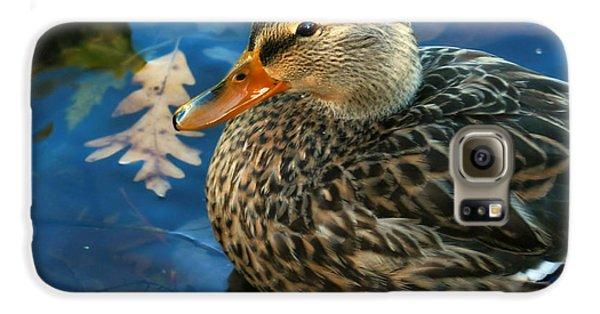 Female Mallard Duck In The Fox River Galaxy S6 Case