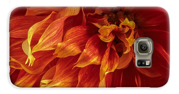 Fiery Dahlia Galaxy S6 Case