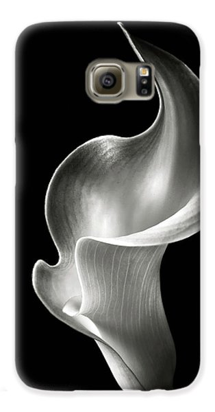 Lily Galaxy S6 Case - Flame Calla Lily In Black And White by Endre Balogh