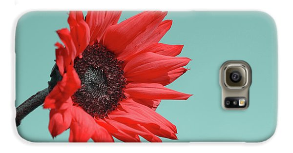 Flowers Galaxy S6 Case - Floral Energy by Aimelle