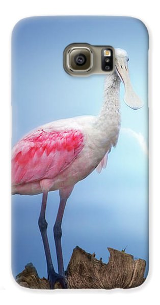 Foggy Morning Spoonbill Galaxy S6 Case