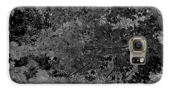 Forest Hut Galaxy S6 Case