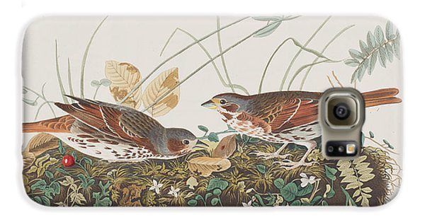Fox Sparrow Galaxy S6 Case by John James Audubon