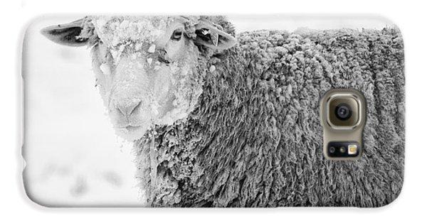 Sheep Galaxy S6 Case - Frozen Dinner by Mike  Dawson