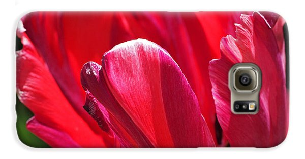 Glowing Red Tulip Galaxy S6 Case