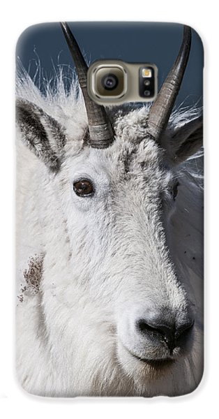 Goat Portrait Galaxy S6 Case