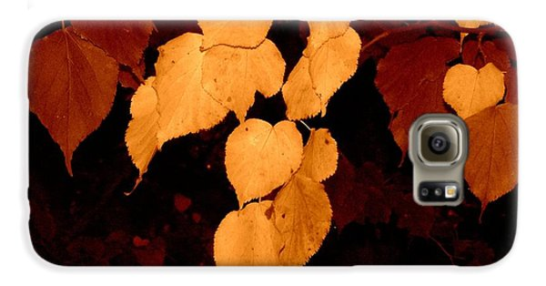Golden Fall Leaves Galaxy S6 Case