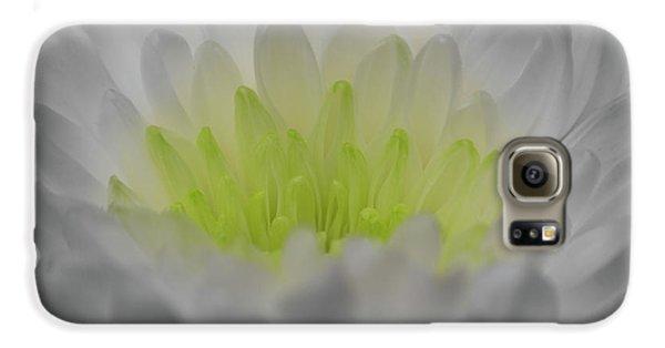 Golden Glow Galaxy S6 Case